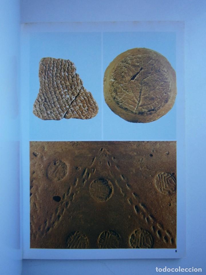 Libros de segunda mano: LA CIVILTA CICLADICA LA COLLEZIONE CICLADICA MUSEO ARCHEOLOGICO ATENE HERACLIO FOURNIER VITORIA - Foto 9 - 128939339