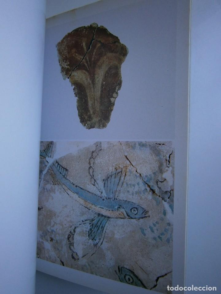 Libros de segunda mano: LA CIVILTA CICLADICA LA COLLEZIONE CICLADICA MUSEO ARCHEOLOGICO ATENE HERACLIO FOURNIER VITORIA - Foto 13 - 128939339