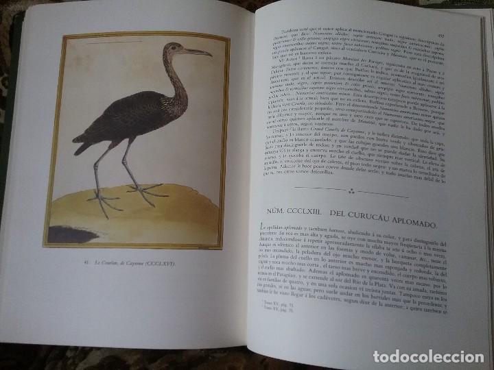 Libros de segunda mano: Apuntamientos para la Historia Natural de los Paxaros del Paraguay y del Rio de la Plata. Laminas. - Foto 3 - 129177103