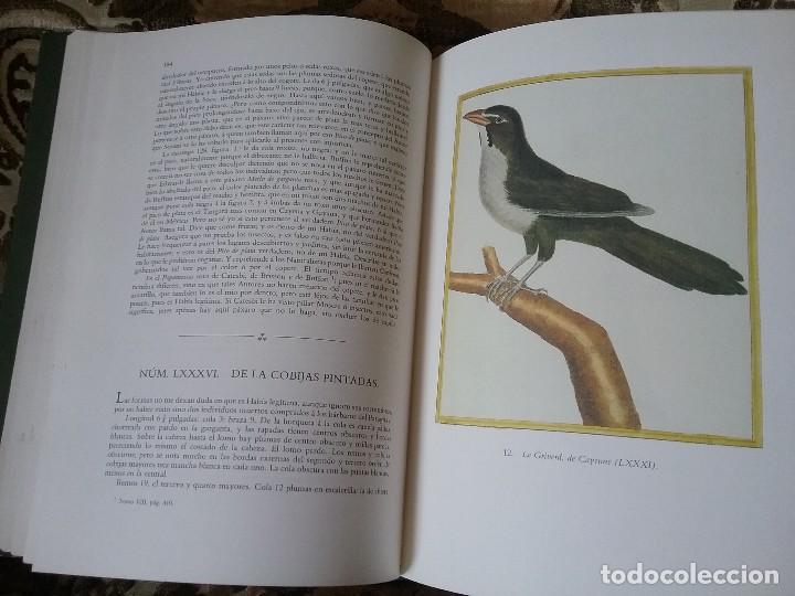 Libros de segunda mano: Apuntamientos para la Historia Natural de los Paxaros del Paraguay y del Rio de la Plata. Laminas. - Foto 4 - 129177103