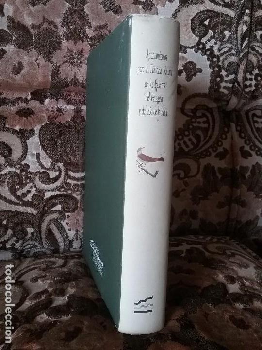 Libros de segunda mano: Apuntamientos para la Historia Natural de los Paxaros del Paraguay y del Rio de la Plata. Laminas. - Foto 11 - 129177103