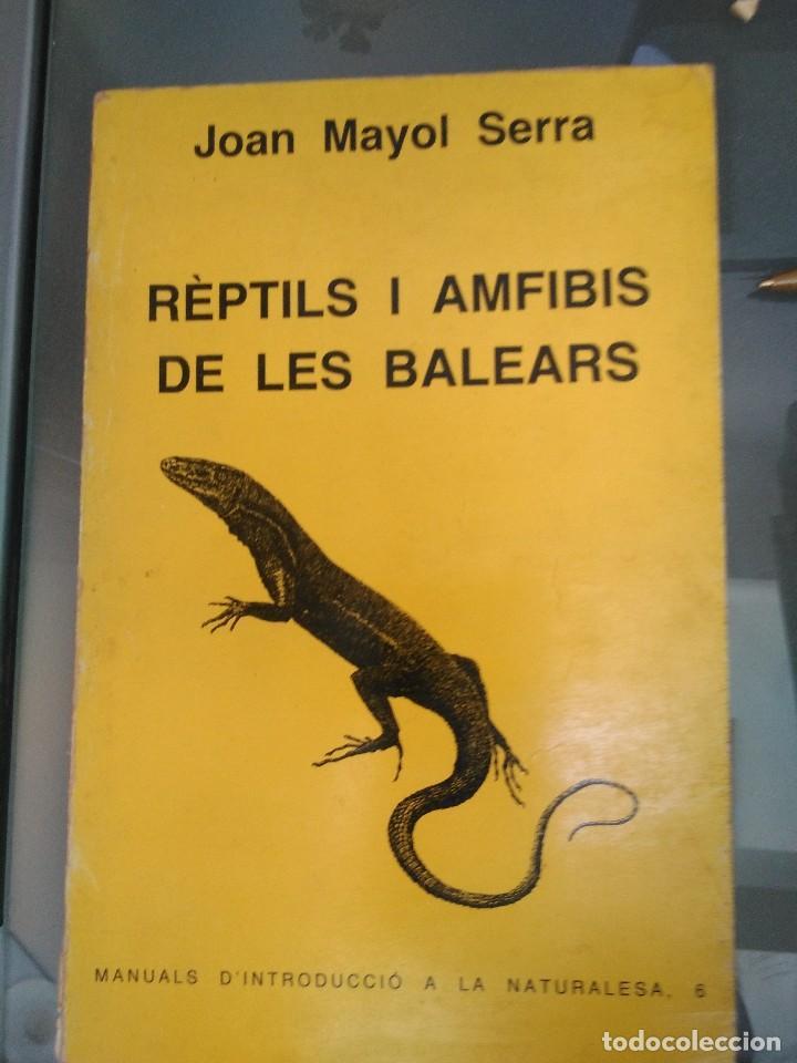 REPTILS I AMFIBIS DE LES BALEARS, J. MAYOL (Libros de Segunda Mano - Ciencias, Manuales y Oficios - Biología y Botánica)