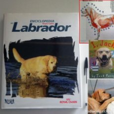 Libros de segunda mano: EL LABRADOR 447P. LIBRO DE ENCICLOPEDIA ROYAL CANIN PERRO HISTORIA VETERINARIA GUÍA MASCOTA CUIDADOS. Lote 129664767