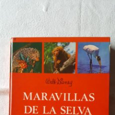 Libros de segunda mano: LIBRO MARAVILLAS DE LA SELVA (WALT DISNEY) (ED. GAISA, 1967) 1ª EDICIÓN ¡ORIGINAL!. Lote 130016671
