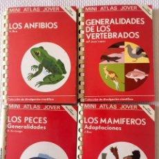 Libros de segunda mano: 4 MINI ATLAS JOVER: LOS MAMÍFEROS...- GENERALIDADES DE LOS VERTEBRADOS - LOS PECES... - LOS ANFIBIOS. Lote 130264202