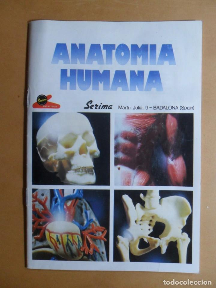 ANATOMIA HUMANA - ED. SERIMA (Libros de Segunda Mano - Ciencias, Manuales y Oficios - Biología y Botánica)
