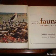 Libros de segunda mano: FÉLIX RODRÍGUEZ DE LA FUENTE. Lote 131692554