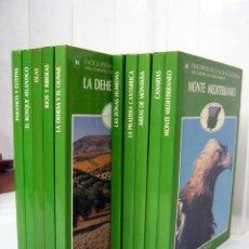 Libros de segunda mano: NATURALEZA DE ESPAÑA (CARDELUS , BORJA) . CIRCULO ... COMPLETA !!... 10 TOMOS. Lote 132148882