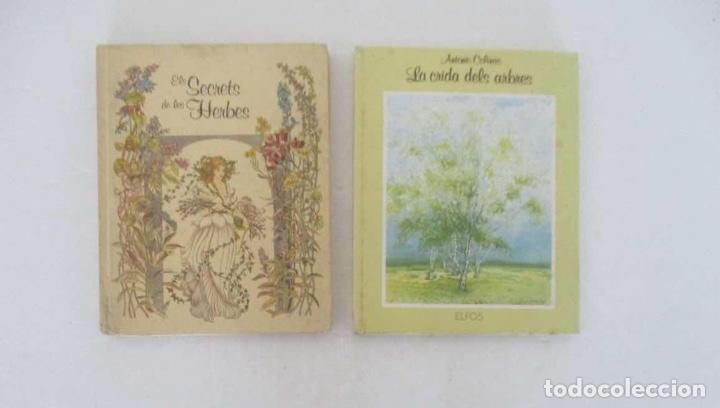 EL SECRET DE LES HERBES Y LA CRIDA DELS ARBRES - EDITORIAL ELFOS (Libros de Segunda Mano - Ciencias, Manuales y Oficios - Biología y Botánica)