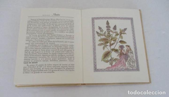 Libros de segunda mano: EL SECRET DE LES HERBES Y LA CRIDA DELS ARBRES - EDITORIAL ELFOS - Foto 4 - 132575190