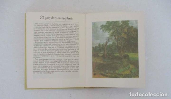 Libros de segunda mano: EL SECRET DE LES HERBES Y LA CRIDA DELS ARBRES - EDITORIAL ELFOS - Foto 8 - 132575190