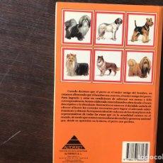 Libros de segunda mano - Mi amigo el perro. Alan Rusell - 132588409