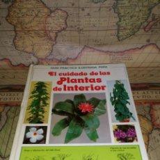 Libros de segunda mano: EL CUIDADO DE LAS PLANTAS DE INTERIOR. GUIA PRACTICA ILUSTRADA. DAVID LONGMAN. PRIMERA EDICION 1981. Lote 132656238