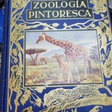 Libros de segunda mano: ZOOLOGIA PINTORESCA. RAMON SOPENA. Lote 132665710