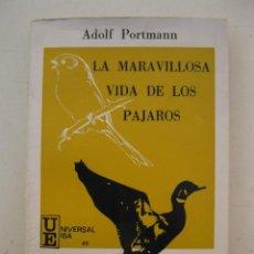 Libros de segunda mano: LA MARAVILLOSA VIDA DE LOS PÁJAROS - ADOLF PORTMANN - EDICIONES IBEROAMERICANAS - AÑO 1970.. Lote 133838646