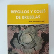 Libros de segunda mano: REPOLLO Y COLES DE BRUSELAS. MATEO BOX. Lote 133903738