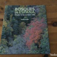 Libros de segunda mano: BOSQUES DE ESPAÑA, DONDE LA LUZ SE HACE VIDA. JOAQUÍN ARAUJO. Lote 134082102