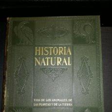 Libros de segunda mano: LIBRO ... HISTORIA NATURAL .. GEOLOGIA .. INSTITUTO GALLACH 1953. Lote 134102331