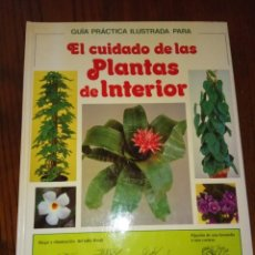 Libros de segunda mano: GUIA PRACTICA ILUSTRADA PARA EL CUIDADO DE LAS PLANTAS DE INTERIOR-DAVID LONGMAN.. Lote 135363850