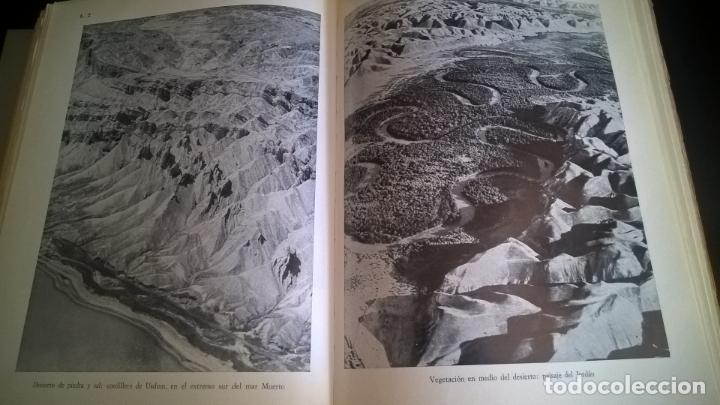 Libros de segunda mano: EL MUNDO DE LA BIBLIA, CINCO MILENIOS EN PALESTINA -SIRIA , ANTÓN JIRKU, 112 LAMINAS - Foto 7 - 135488566