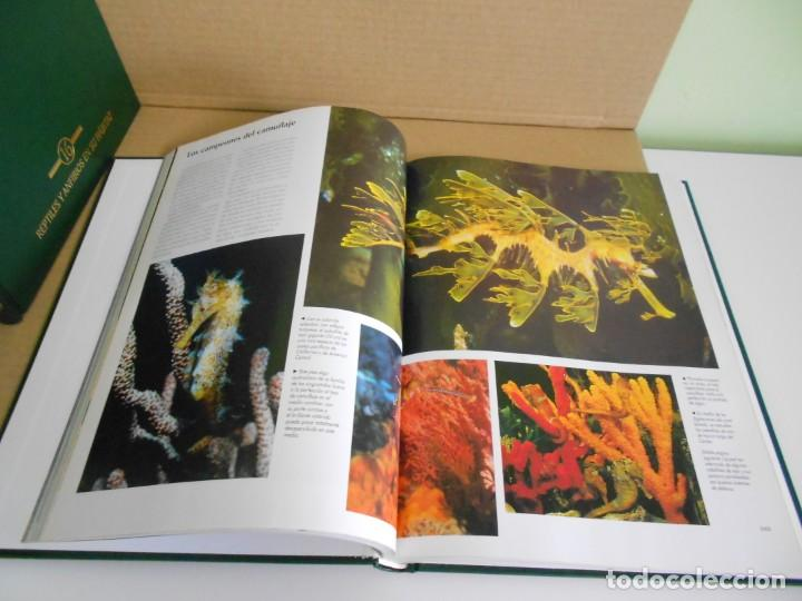 el maravilloso mundo de los animales, enciclope - Comprar