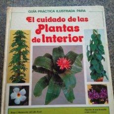 Libros de segunda mano: EL CUIDADO DE LAS PLANTAS DE INTERIOR -- GUIA PRACTICA -- CIRCULO 1981 --. Lote 136112814