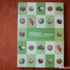 Libros de segunda mano: DESCRIPCIÓN DE LAS VARIEDADES DE MANZANA DE LA DOP SIDRA DE ASTURIAS. Lote 137429766