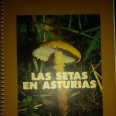 Livres d'occasion: LAS SETAS EN ASTURIAS. VARIOS AUTORES. CAJA DE ASTURIAS. AÑO 1997. ENCUADERNACIÓN CON ESPIRAL. PÁGIN. Lote 139074789
