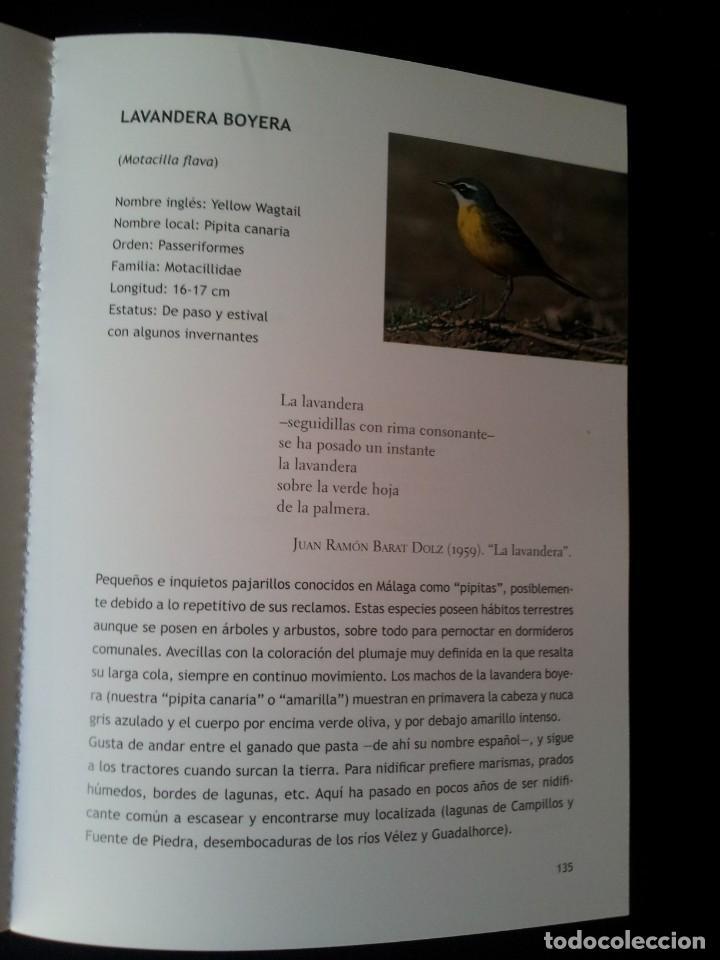 Libros de segunda mano: MANUEL GARRIDO SANCHEZ - AVES Y POESIA, LAS 180 AVES MAS COMUNES EN MALAGA Y PROVINCIA - 2015 - Foto 4 - 139112186