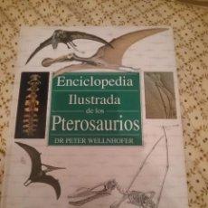Libros de segunda mano: ENCICLOPEDIA ILUSTRADA DE LOS PTEROSAURIOS -ED. SUSAETA --REFM3E3. Lote 139615190