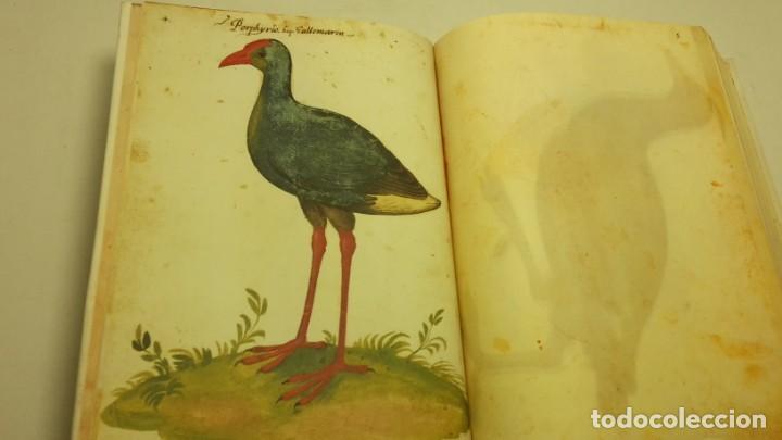 Libros de segunda mano: Códice Pomar . Atlas de la historia natural de Felipe II. - Foto 3 - 139990314