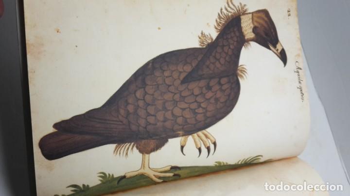 Libros de segunda mano: Códice Pomar . Atlas de la historia natural de Felipe II. - Foto 4 - 139990314