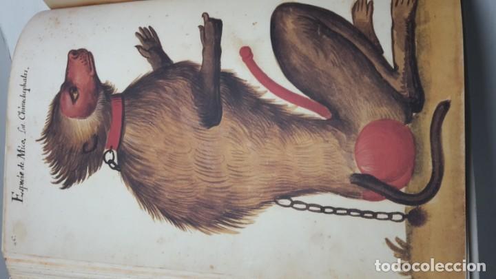 Libros de segunda mano: Códice Pomar . Atlas de la historia natural de Felipe II. - Foto 6 - 139990314
