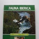 Libros de segunda mano: TOMO 3 FAUNA IBÉRICA, EL HOMBRE Y LA TIERRA FÉLIX RODRÍGUEZ DE LA FUENTE. Lote 140365662