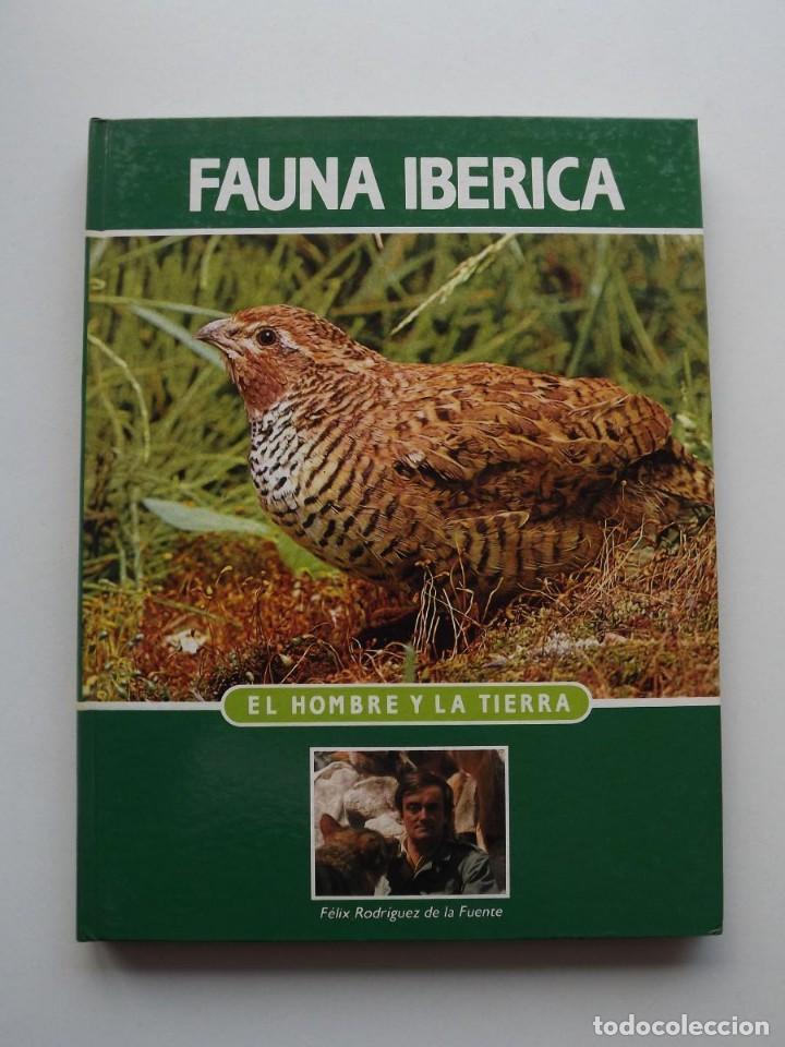 TOMO 6 FAUNA IBÉRICA, EL HOMBRE Y LA TIERRA FÉLIX RODRÍGUEZ DE LA FUENTE (Libros de Segunda Mano - Ciencias, Manuales y Oficios - Biología y Botánica)
