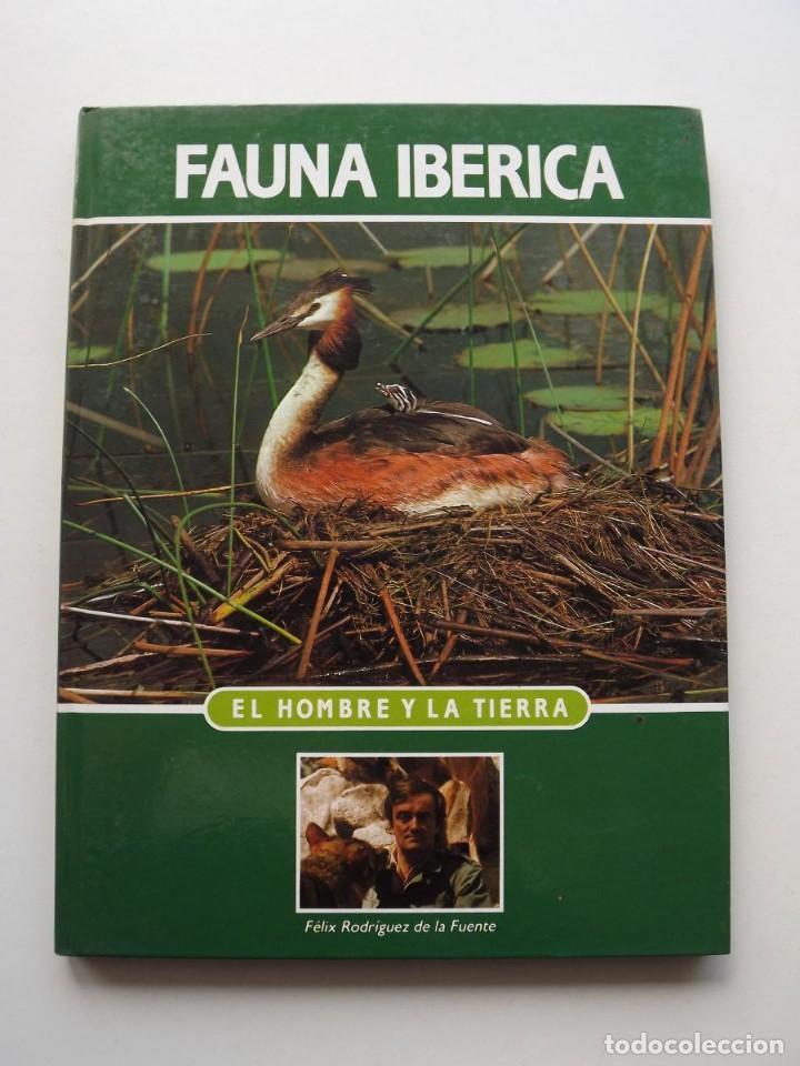 TOMO 12 FAUNA IBÉRICA, EL HOMBRE Y LA TIERRA FÉLIX RODRÍGUEZ DE LA FUENTE (Libros de Segunda Mano - Ciencias, Manuales y Oficios - Biología y Botánica)