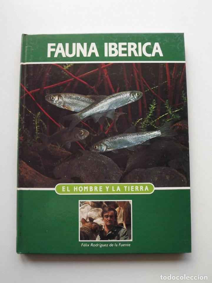 TOMO 14 FAUNA IBÉRICA, EL HOMBRE Y LA TIERRA FÉLIX RODRÍGUEZ DE LA FUENTE (Libros de Segunda Mano - Ciencias, Manuales y Oficios - Biología y Botánica)