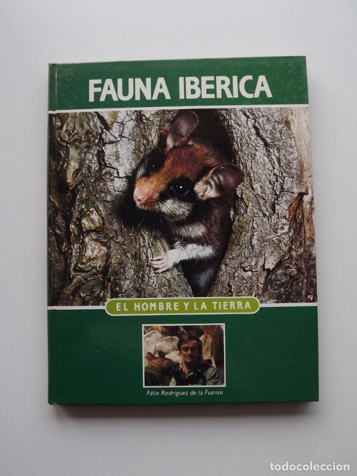 TOMO 2 FAUNA IBÉRICA, EL HOMBRE Y LA TIERRA FÉLIX RODRÍGUEZ DE LA FUENTE (Libros de Segunda Mano - Ciencias, Manuales y Oficios - Biología y Botánica)