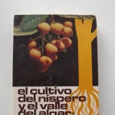 Libros de segunda mano: EL CULTIVO DEL NÍSPERO Y EL VALLE DEL ALGAR-GUADALEST 1983. Lote 140405626