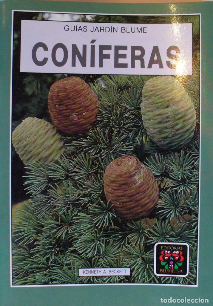 GUIA DE JARDIN BLUME. CONIFERAS (Libros de Segunda Mano - Ciencias, Manuales y Oficios - Biología y Botánica)