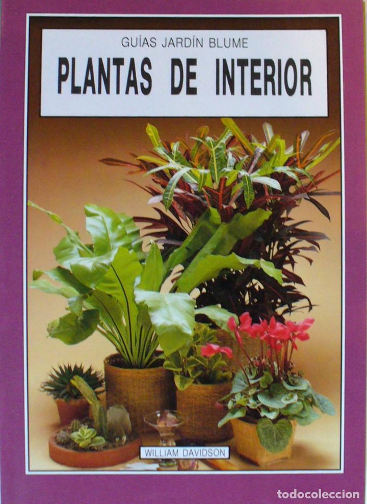 GUIA DE JARDIN BLUME-PLANTAS DE INTERIOR (Libros de Segunda Mano - Ciencias, Manuales y Oficios - Biología y Botánica)