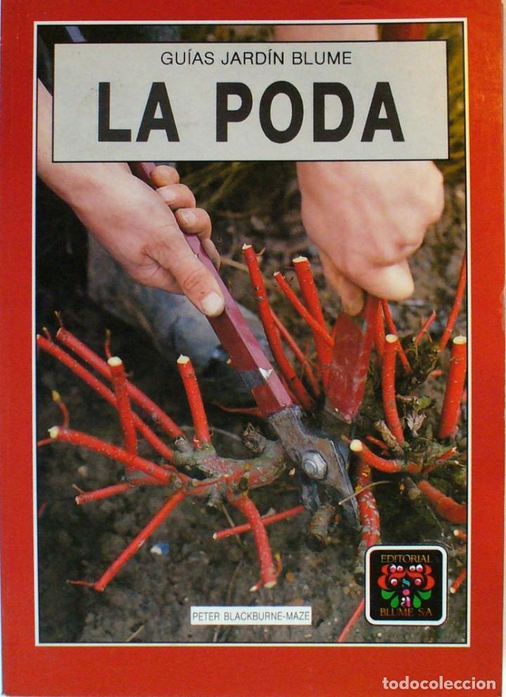 GUIA DE JARDIN BLUME-LA PODA (Libros de Segunda Mano - Ciencias, Manuales y Oficios - Biología y Botánica)