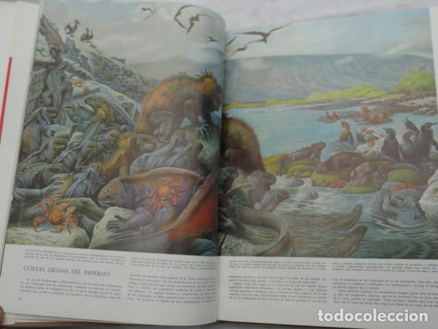 Libros de segunda mano: LIBRO LIFE - LAS MARAVILLAS DE LA VIDA -. AÑO 1968. - Foto 4 - 142343218