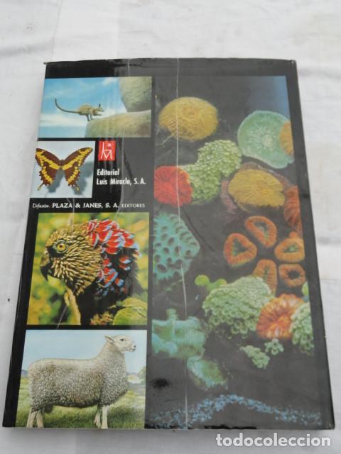 Libros de segunda mano: LIBRO LIFE - LAS MARAVILLAS DE LA VIDA -. AÑO 1968. - Foto 6 - 142343218