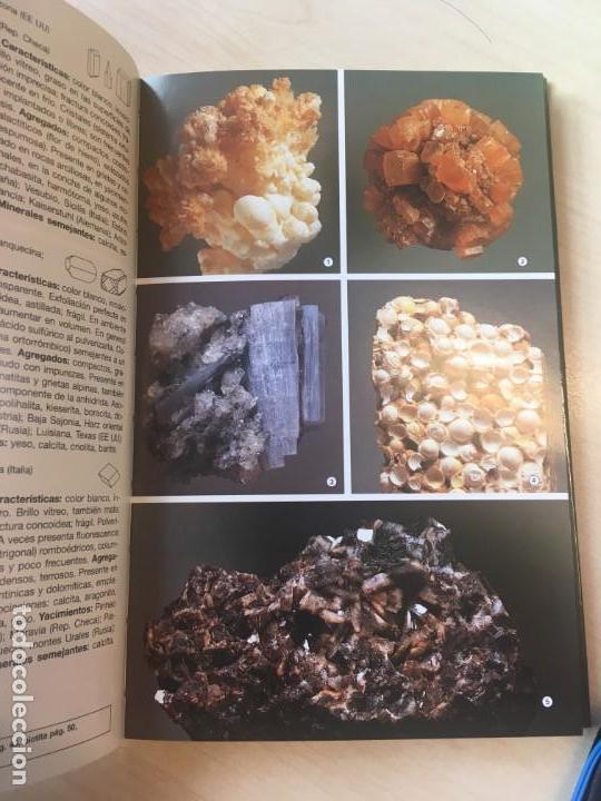 Libros de segunda mano: Walter Schumann. Minerales del mundo. - Foto 3 - 142397786