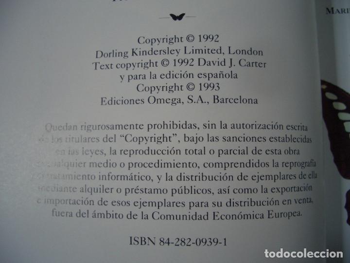 Libros de segunda mano: GUIA IDENTIFICACION MARIPOSAS DIURNAS Y NOCTURNAS - CARTER - EDITORIAL OMEGA 1993 - Foto 5 - 142597422