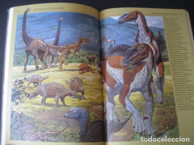 Libros de segunda mano: LIBRO EL MUNDO PERDIDO DE LOS DINOSAURIOS - Foto 10 - 143206970