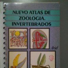 Libros de segunda mano: NUEVO ATLAS DE ZOOLOGÍA, INVERTEBRADOS. J. PUJADE. Lote 143868284