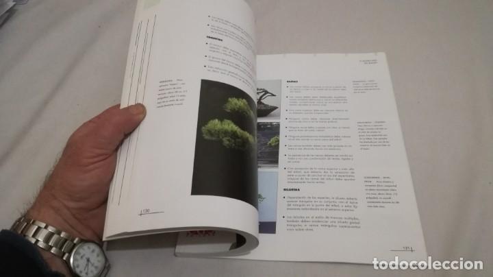 Libros de segunda mano: BONSAIS / GORDON OWEN / EDILUPA - Foto 10 - 194249078