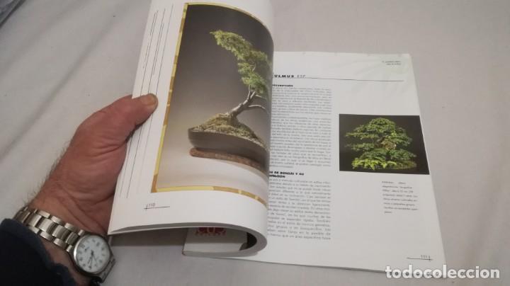 Libros de segunda mano: BONSAIS / GORDON OWEN / EDILUPA - Foto 11 - 194249078